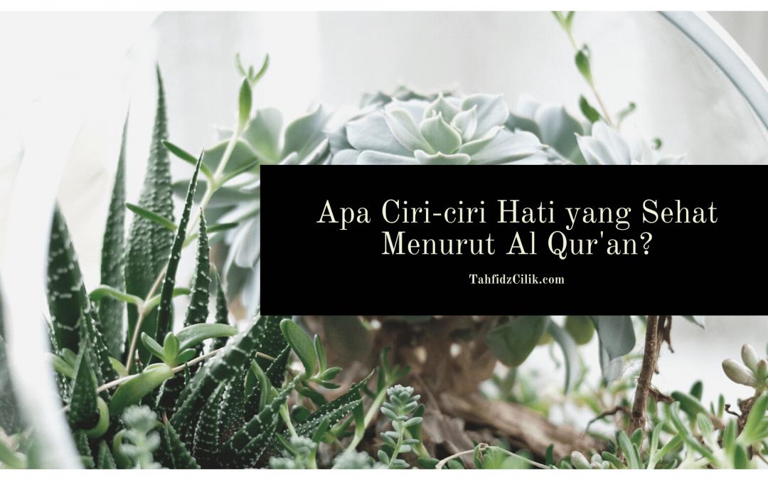 Apa Ciri-ciri Hati yang Sehat Menurut Al Qur'an?